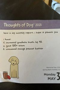 Very productive dog
